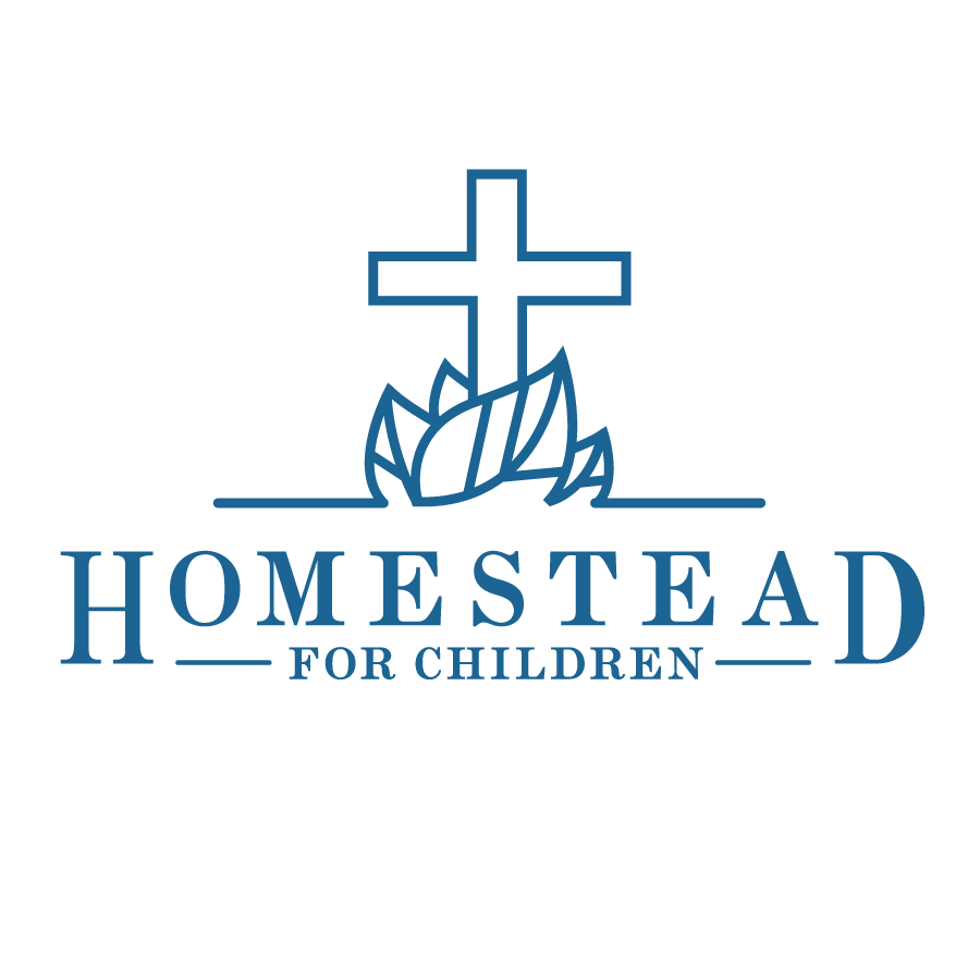 nonprofit logo north georgia mountains, homestead for children, non profit branding
